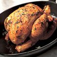 Best Chicken Recipes