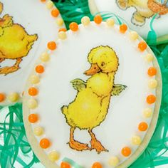 Bunnies & Chicks Wafer Paper Cookies How-To, Make Adorable Easter Cookies With Edible Images    http://www.fancyflours.com/product/bunnies-and-chicks-wafer-paper-cookies-how-to/Spring_and_Easter_Themed_Recipes