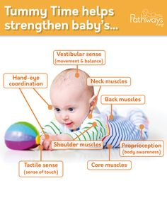 Oh, the benefits of #TummyTime! Here are a few ways Tummy Time helps baby- from motor, sensory, to vision development. Get the details at Pathways.org! #babydevelopment #baby #milestones #babymilestones #physicaltherapy #pediatrictherapy #motorskills #grossmotor #motordevelopment Core Muscles, Back Muscles, Baby Development, Visual Development, 1 Month Baby, Shoulder Muscles, Get Baby, Songs To Sing, Tummy Time