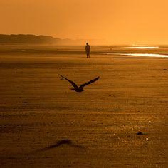 Lust auf Nordsee? Wir zeigen dir auf www.lilies-diary.com die schönsten Nordsee Bilder, verraten Tipps für alle Inseln und mehr. Viel Spaß beim Urlaub! #nordsee #urlaub #bilder