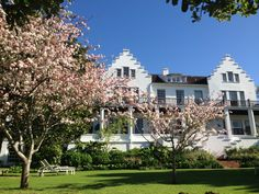Look at these incredible blossoms in the gardens of the Cellars-Hohenort in Cape Town!