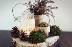 las, leśny, szyszka, koronka, mech, dekoracje, drewno, wrzosy
