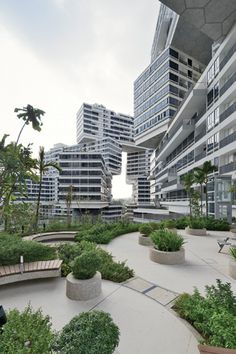 The Interlace, Singapore (OMA)