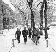 Chicago Snow Day!