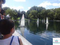 Parque incrível - Viajar para Nova York com Crianças – Dicas e Dificuldades