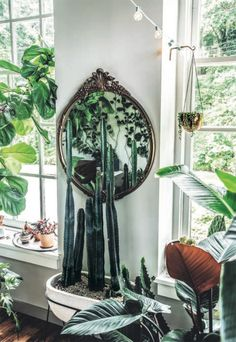 hilton carter's Wild Interiors: Beautiful plants in beautiful spaces / sfgirlbybay