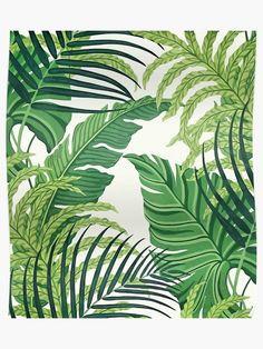 Green Banana Leaves Wall Decor Tropical Leaves Removable