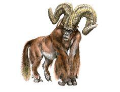 terryl whitlatch bestiary - Google Search