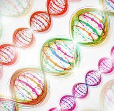 Beautiful DNA