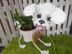 Personalized Bischon Frise/ Poodle Puppy Garden Planter with Fesh Greens Arrangement- Perfect Gift for the Pet Lover on Etsy, $45.00