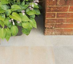 Porcelain paving not only looks fantastic, but has range of benefits over other garden materials!