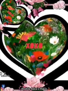 S Videos, Avatar, Watermelon, Love You, Singers, Amor, Storage, Board, Presents