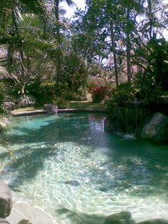 Stunning Natural Swimming Pool Ideas For Your Home Yard To Try 18 Natural Swimming Ponds, Small Swimming Pools, Swimming Pools Backyard, Swimming Pool Designs, Pool Landscaping, Natural Pools, Lap Pools, Indoor Pools, Small Pools