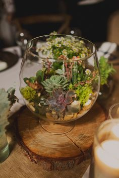 desertscapes in glass bowls, photo by Sloan Photographers http://ruffledblog.com/glam-carondelet-house-wedding #wedding #centerpieces #succulents