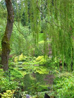The Butchard Gardens, Vancouver Island