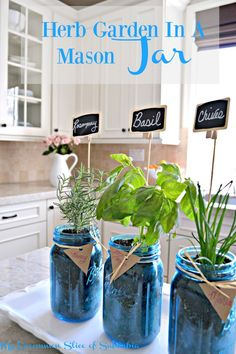 Must PIN Mason Jar Project! Make a Herb Garden in a mason jar, great idea for Mother's Day!