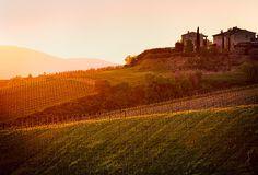 Italy - Tuscanny: Tuscan Dream | Flickr - Photo Sharing!