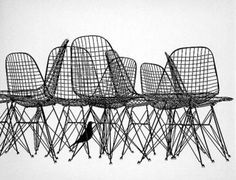 Perfect styling by Ray! Charles & Ray Eames, Wire Chairs & Eames Bird Sculpture, 1952_USA