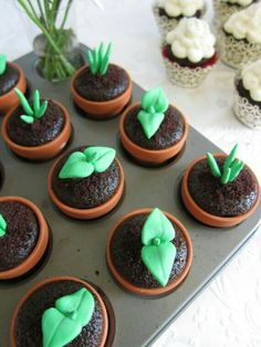 Leaf sprouting cupcakes