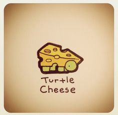 Turtle Cheese