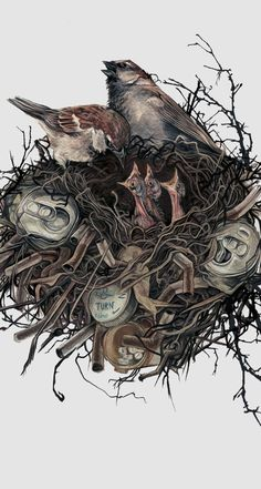 . by AJ Frena, via Behance #birds #dirt #garbage #cans #illustration #twigs #nest #drawing #nature