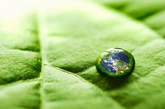 13 Ways to Give Your Event a Green Makeover | #GMIC #greenmeeings #greenevents