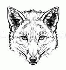 fox face drawing line - Google Search