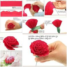 DIY Beautiful Crepe Paper Carnation, DIY Lovely Crepe Paper Carnation Crepe paper flowers seem like pure flowers however last more and received't wilt or droop.Crepe paper flowers look like natural flowers but last longer and won't wilt or droop. Tissue Paper Flowers, Felt Flowers, Diy Flowers, Fabric Flowers, Flower Diy, Wedding Flowers, Crepe Paper Roses, Paper Peonies, Papier Diy