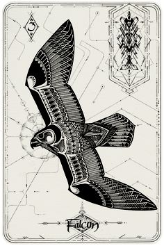 David Hale is doing an Oracle Deck! <3