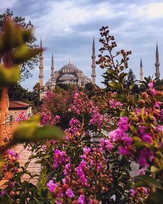 Beautiful Places In The World, Places Around The World, Blue Mosque Turkey, Sultan Ahmed Mosque, Blue Mosque Istanbul, Beautiful Wallpapers For Iphone, Istanbul Travel, Islamic Architecture, Turkey Travel