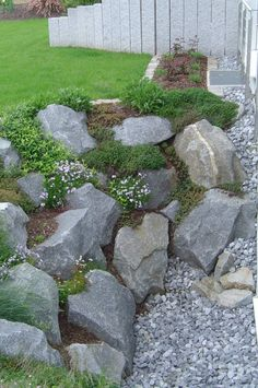 stone wall garden planting result for atrium – … - Modern Plant Images, Plant Pictures, Garden Images, Backyard Vegetable Gardens, Vegetable Garden Design, Indoor Garden, Atrium Garden, Rock Garden Design, Rock Garden Walls