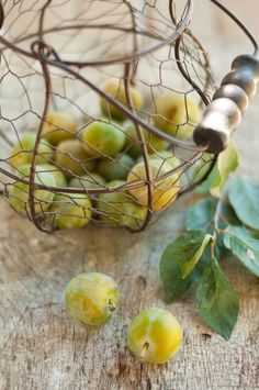 Green Gage Plums.  So sweet.