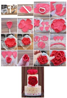 Beautiful Peony. It is created by Katriens from South Africa. https://www.facebook.com/www.katrienscakes.co.za.  https://www.facebook.com/media/set/?set=a.461402430602940.1073741828.183943008348885=1