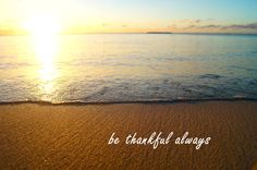 Tropical Beach Decoration  Instant Download by TheAdventuringLens