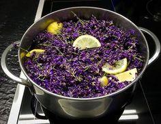 Recept na výborný levandulový sirup