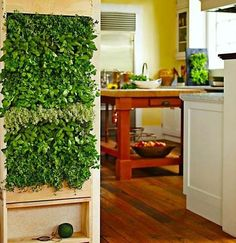 You must have tried all kinds of ways to decorate your home, but you still feel it lacks of a little life and vitality. So you should bring some lovely mini indoor plants into your interior. Indoor greenery is a kind of positive energy that is good for your mood and health. They can be […]