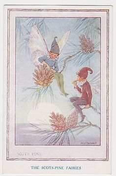 Margaret Tarrant postcard - THE SCOTS PINE FAIRIES by Medici Society