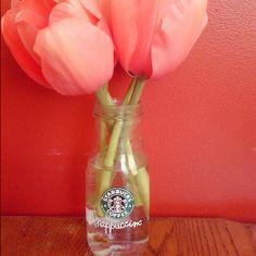 Starbucks Frappuccino Vase