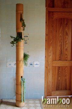 Giant Bamboo Poles