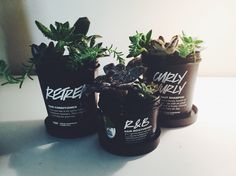 recycling Lush pots