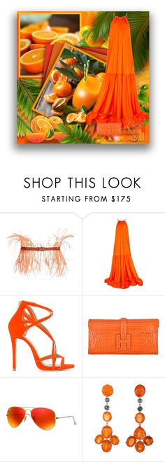 """""""Orange Gal! - Contest!"""" by asia-12 ❤ liked on Polyvore featuring Emilio Pucci, STELLA McCARTNEY, Marc Ellis, Hermès and Ray-Ban"""