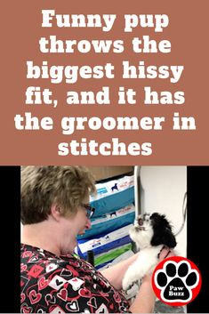 Funny pup throws the biggest hissy fit, and it has the groomer in stitches Cute Puppy Pictures, Funny Dog Pictures, Animal Pictures, Cute Baby Animals, Funny Animals, Horse Dance, Hissy Fit, Good Morning Funny, Vincent Price