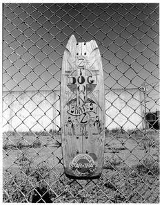 Lords Of Dogtown, Skateboard Art, Thrasher, Skateboards, The Originals, Gallery, Artist, Skate Art, Roof Rack