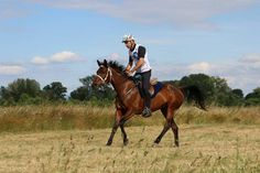 Mr Moneta Riding Helmets, Horses, Lifestyle, Hats, Animals, Animales, Hat, Animaux, Horse