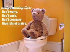 Our Potty Training Experience