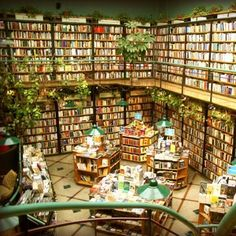 Best Bookstores in Mexico City   Travel + Leisure