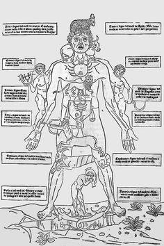 Image pleine grandeur  Johannes de Ketham, Fasciculo de medicina, Venise, Jean…