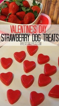 Frozen Strawberry Smoothie Dog Treat Recipe for Valentine's Day for the special dog in your life! These treats are irresistible and easy to make at home! Puppy Treats, Diy Dog Treats, Homemade Dog Treats, Healthy Dog Treats, Dog Biscuit Recipes, Dog Treat Recipes, Dog Food Recipes, Frozen Strawberry Smoothie, Strawberry Hearts