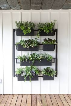 Fixer Upper Season 4 Episode 16 The Little Shack on the Prairie Chip and Joanna Gaines Waco Tx Outdoor Spaces Small Herb Gardens, Outdoor Gardens, Hanging Herb Gardens, Vertical Herb Gardens, Balcony Herb Gardens, Vertical Garden Wall, Outdoor Walls, Outdoor Spaces, Outdoor Wall Planters