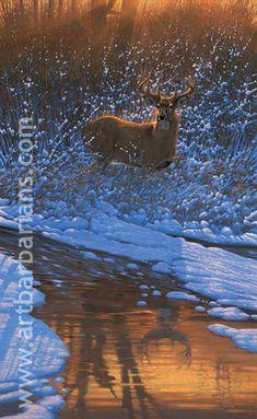 36 Deer Ideas Deer Deer Pictures Whitetail Deer